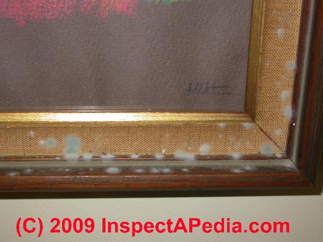 Mold On Indoor Window Trim: Condensation And Moisture