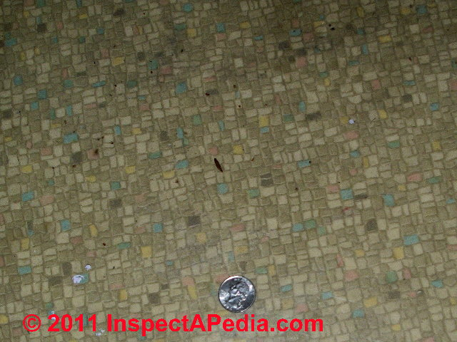 Asbestos Floor Tiles Linoleum Sheet Flooring Photo