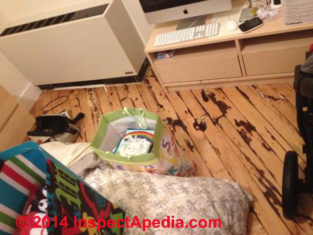wood floor with apparent water and rot and mold damage site of complaint of maple