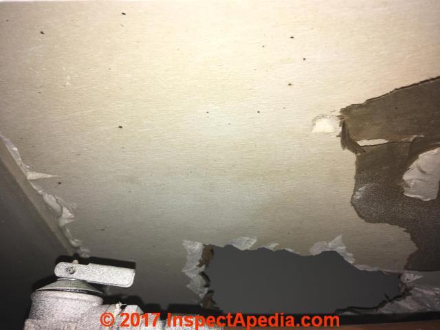 Asbestos photo guide faqs
