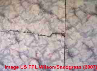 "Felt backed ""linoleum"", Wilson-Snodgrass US FPL (2007)"