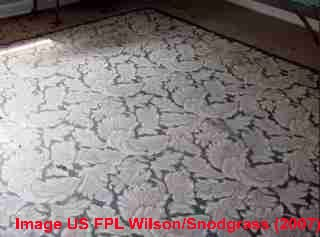 "Congoleum ""rug"" linoleum-type floor covering still in use. Source: Wilson & Snodgrass, US FPL (2007)"