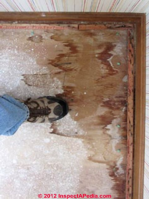 Discovering Evidence of Window or Wall Leaks