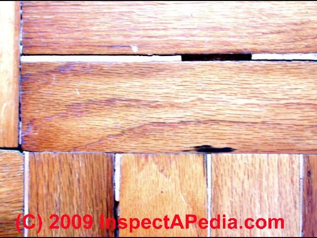 Wood Floor Types Damage Diagnosis Amp Repair Damaged Wood