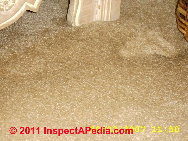 a photographic guide to diagnose the causes of indoor stains on carpet cabinet doors hvac. Black Bedroom Furniture Sets. Home Design Ideas