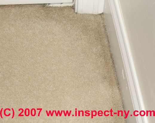 Carpet Stains How To Diagnose Indoor Carpeting Amp Rug