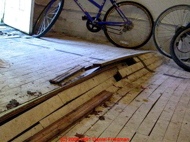 Wood Floor Damage Diagnosis Faqs