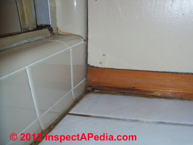 Bathroom Mold Mold In Bathrooms On Tile And Other Surfaces - Leak in bathroom floor