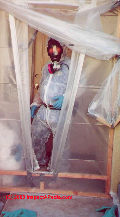 Avoid Cross Contamination During Mold Cleanup Jobs Mold
