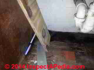 Moldy Rental Apartment Or House Testing Procedures