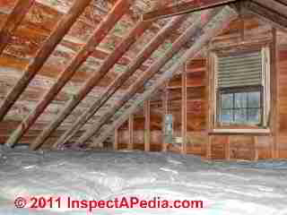 Photo of mold on roof sheathing undersider in an attic - white mold (C) Daniel Friedman