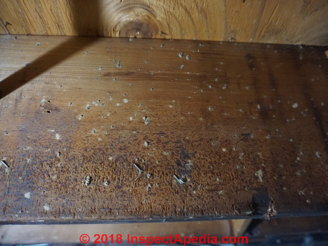 basement mold how to find test for mold in basements a how to rh inspectapedia com