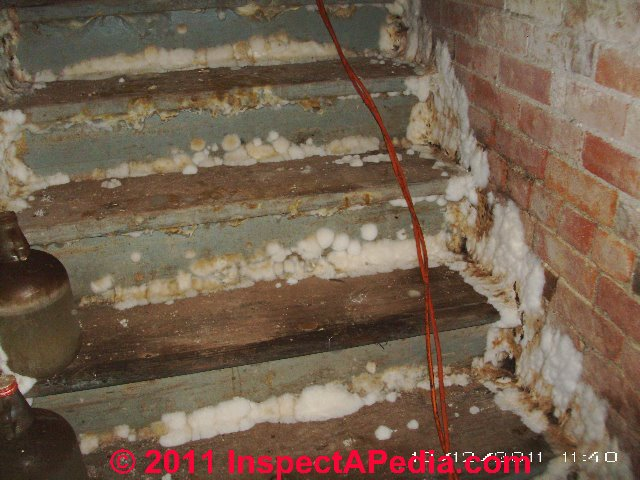 Basement Mold How To Find Amp Test For Mold In Basements