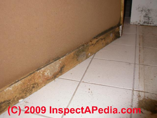 how to clean bathroom tiles mould