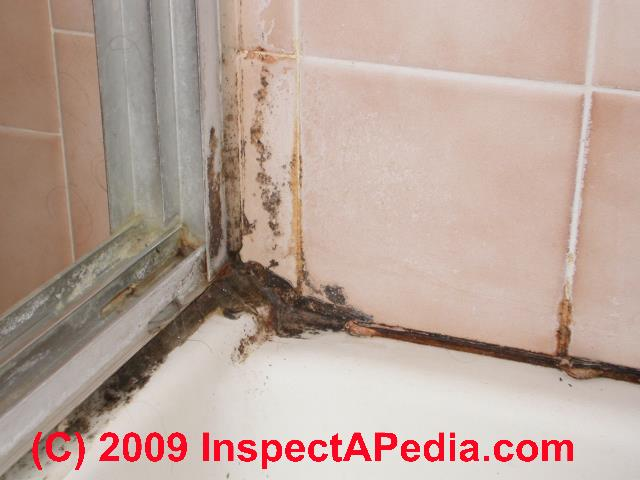 bathroom mold mold in bathrooms on tile and other surfaces rh inspectapedia com