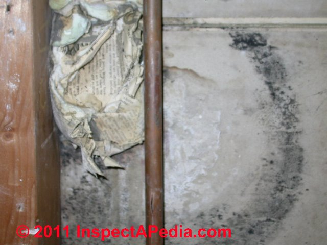Surface Mold In Bathroom photographs of mold growth on different materials: mold on baskets