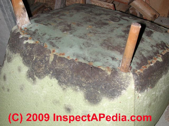 what does black mold look like toxic black mold growth. Black Bedroom Furniture Sets. Home Design Ideas