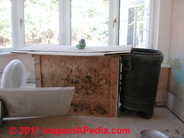 Mold Contaminated Kitchen or Bathroom Cabinets