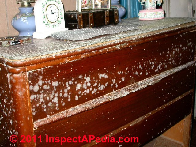 Mold Commonly Found In Indoor Dust Samples Mold On Plumbing Fixtures Ceramic Surfaces Mold