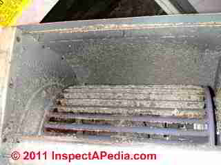 Photo of mold on the air conditionre blower fan blades (C) Daniel Friedman
