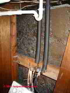 Photo of mold on wood fibergboard sheathing or insulating board (C) Daniel Friedman