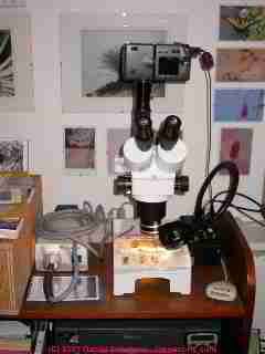 Photograph of a stereo microscope combined with a Nikon Coolpix 9500 digital camera