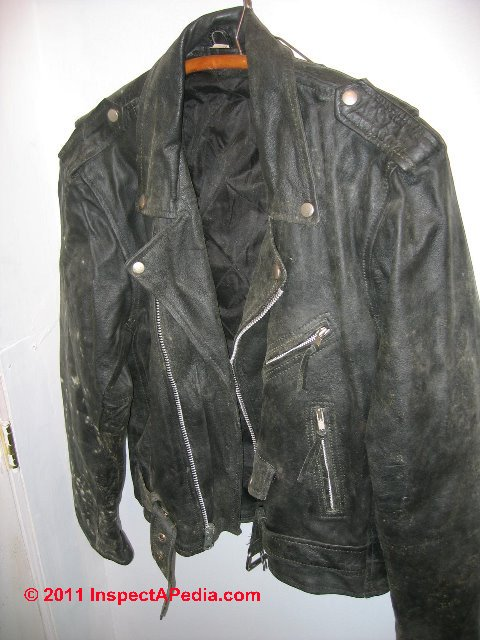 Moldy leather jacket  C  D Friedman. Mold odor removal  guide to Finding   Removing Moldy Musty Odors