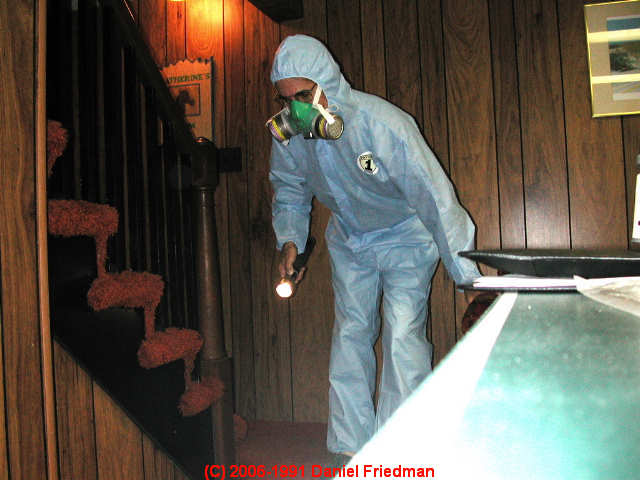 Safety And Health Procedures When Looking For Or Cleaning Up Mold Contamination In Buildings