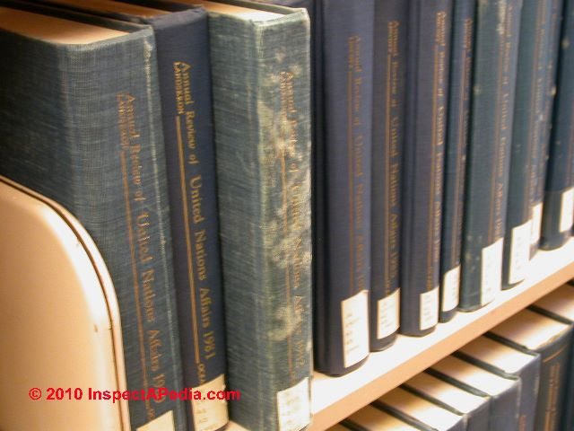 Mold On Books Moldy Books Can Be Cleaned Stored Or