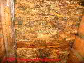 Photo of mold on OSB roof sheathing  (C) Daniel Friedman