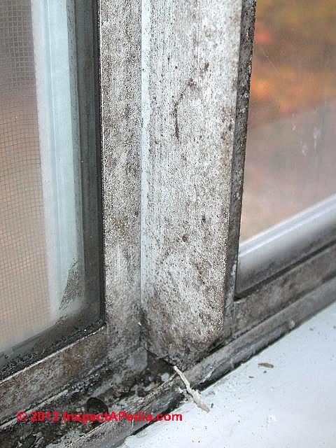 Mold On Plastic Windows