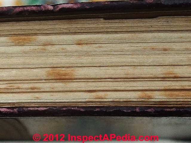 Removing mold from books?