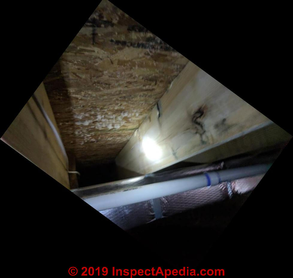 Mold On Subfloor During Construction: Brown Mold ID FAQs Q&A On Brown Mold Contamination In