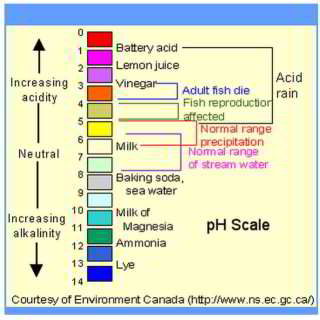 pH scale for common materials  - www.ns.ec.gc.ca