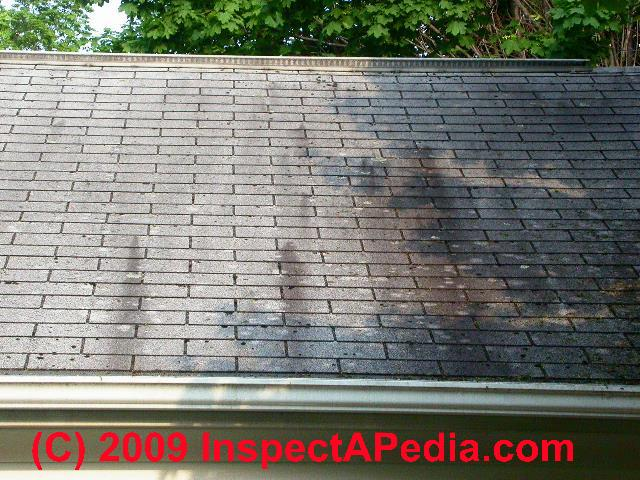 Roof Stain Identification Amp Cure Tests For Black Algae