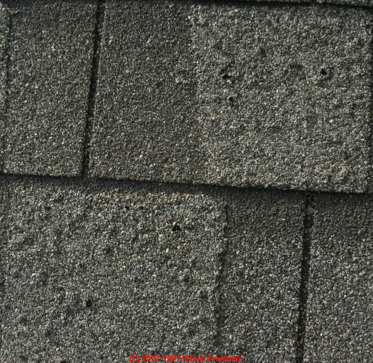 Roof Shingle Blisters Internachi Inspection Forum