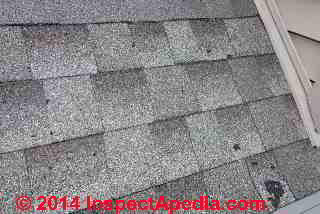 Asphalt shingle damage from hail or product defect (C) InspectAPedia JF
