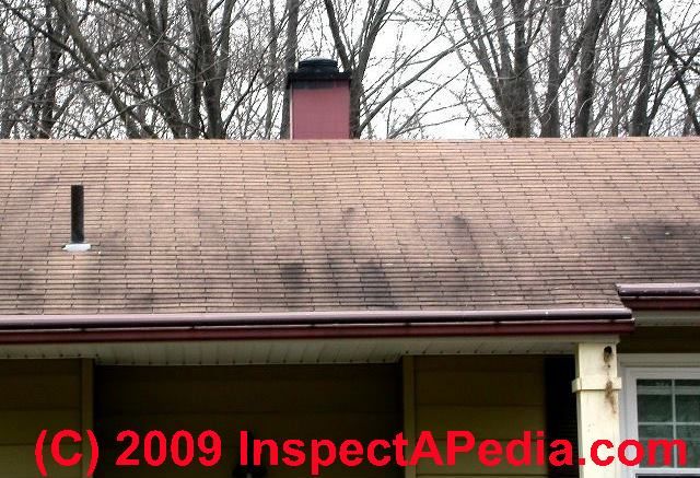 Black Or Green Algae Stains On Asphalt Roof Shingles