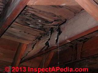 Flashing cement patch failure on a clay tile roof (C) Daniel Friedman
