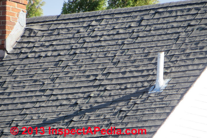 grass roof tin roof book essay