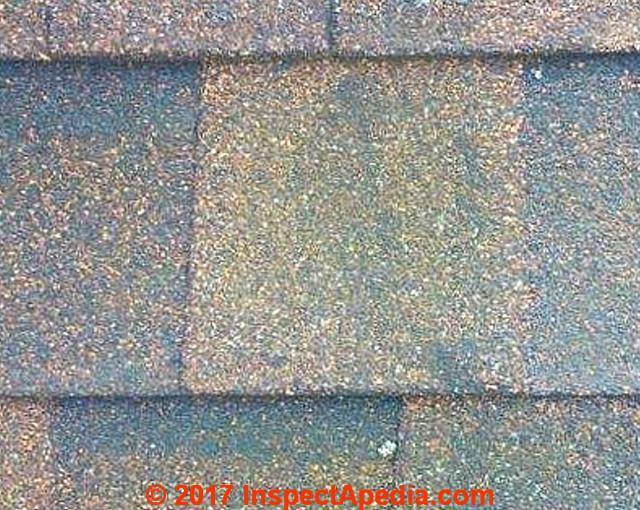 Black Or Green Algae Stains On Asphalt Roof Shingles