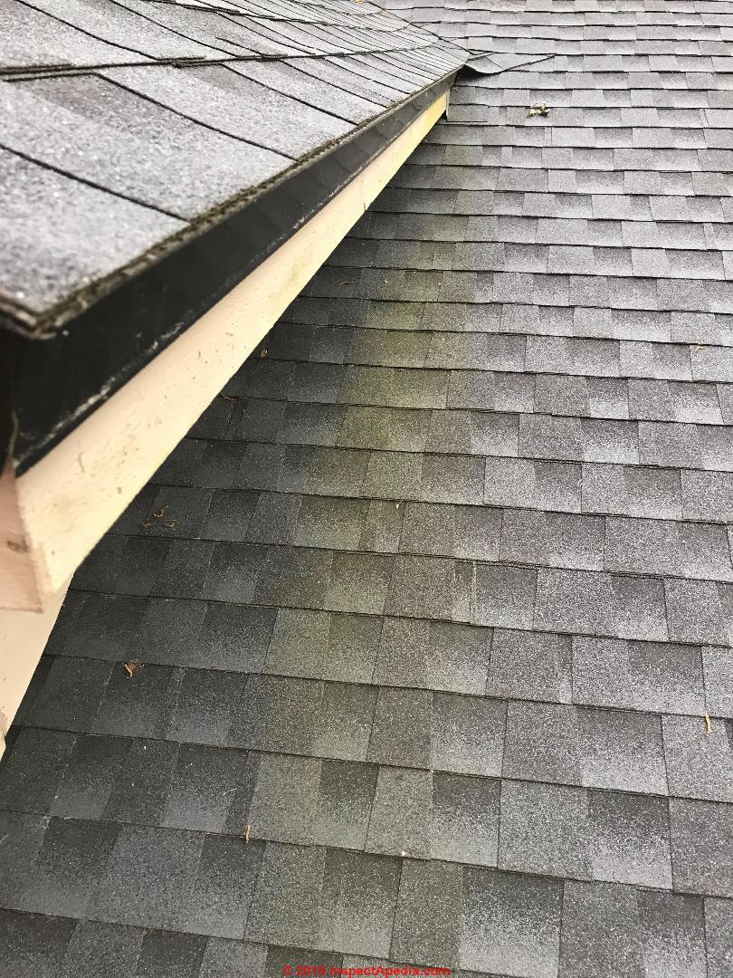 Clean Algae Stains On Roofs Cleaning Prevention Of Black Algae Or Green Algae Stains On Roofs
