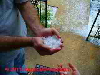 Shingle granules in gutter (C) D Friedman L B