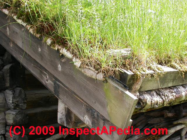 Sod Roofs Dirt Or Grass Roofs Green Roofs Traditional