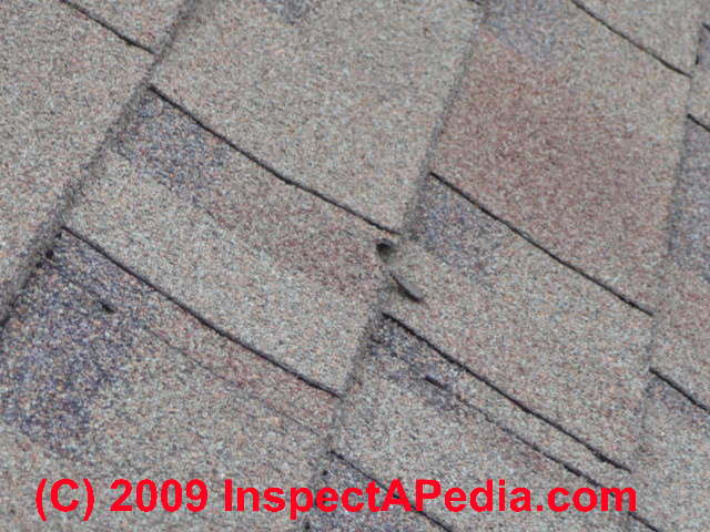 Shingle Damage Diagnosis Photo Guide To Mechanically