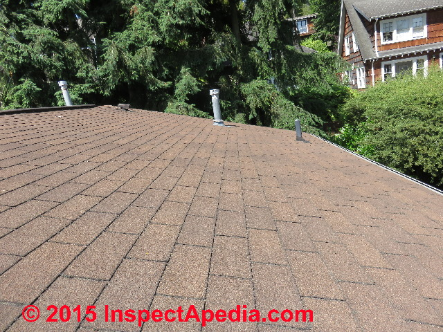 Seattle WA Roof Treated With Moss B Ware From Corey (C) Daniel Friedman ...