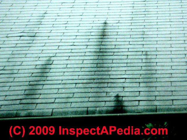 Extractive Bleeding Shingle Stains Cause Amp Diagnosis Of