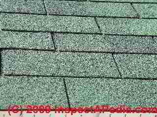 Blistered Asphalt Roof Shingles Shingle Rash Blisters As