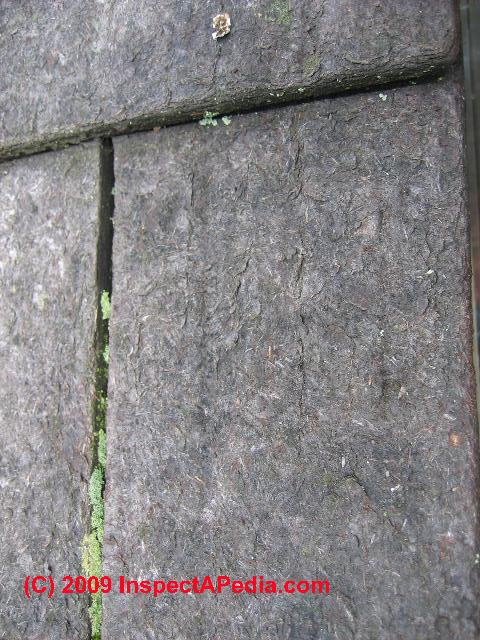 Woodruf Shingle Moss And Lichens C Daniel Friedman Fiber Cement Fiberboard Roof  Tiles Shingles Masonite Source