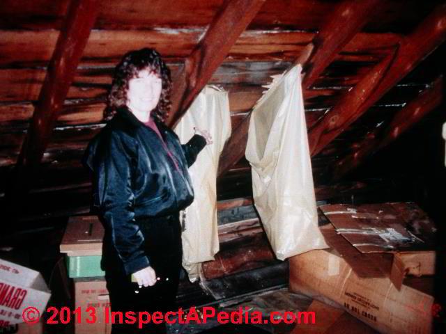Roof Leak Diagnostic Faqs